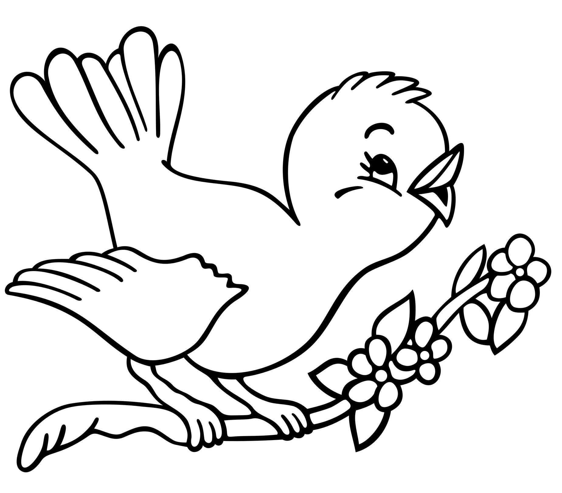 MUSAVE - Museo de las Aves de México | Diviertete