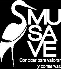 MUSAVE - Museo de las Aves de México